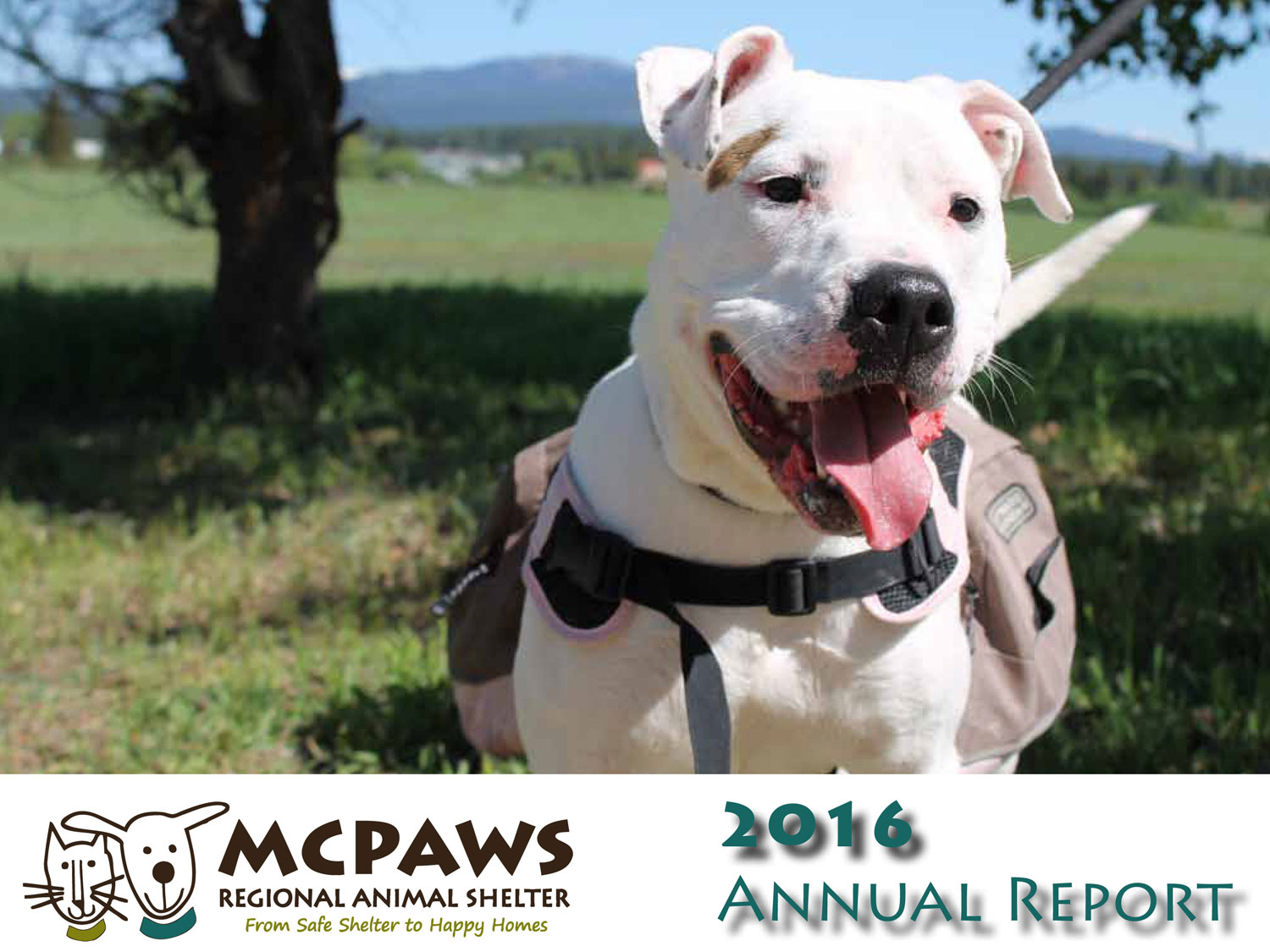 Annual Report & Financial Info - MCPAWS Regional Animal Shelter